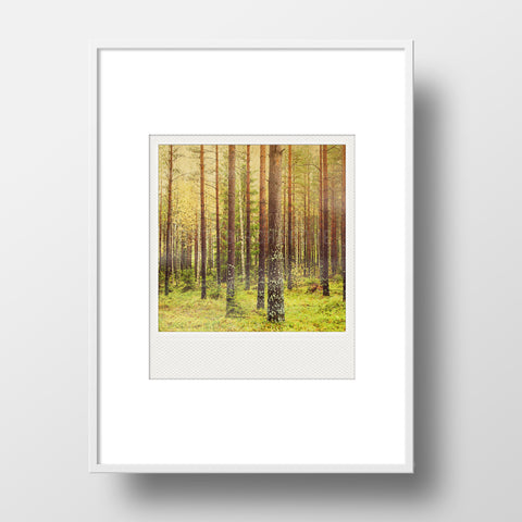 SALE<br> Metallic Polaroid Magnet <br>Forest (metsä) in Finland