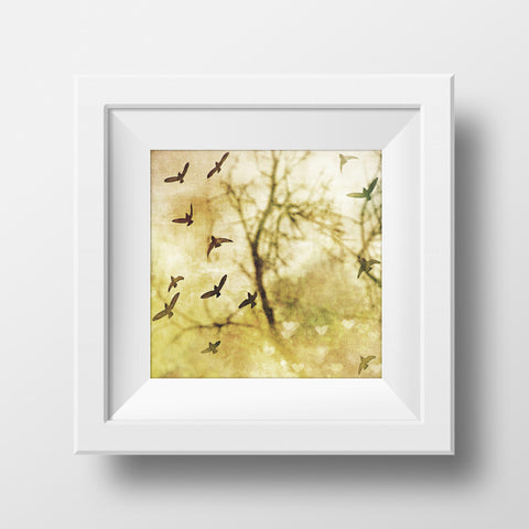 CLEARANCE Print <br>Birds in Flight<br> Matte Finish + Various Sizes