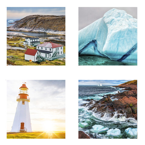 Metallic Mini Magnet Set of 4 <br> Newfoundland + Labrador