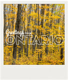 CLEARANCE<br> Metallic Polaroid Magnet <br>Greetings from Ontario #3