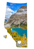 Alberta Love Magnet <br>Banff National Park Larches