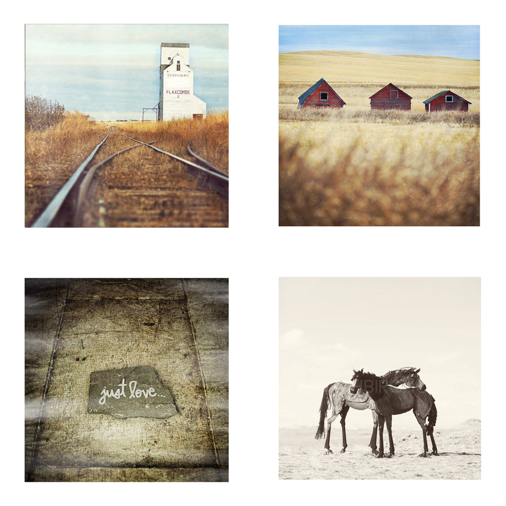 Metallic Mini Magnet Set of 4 <br> Prairie Moments