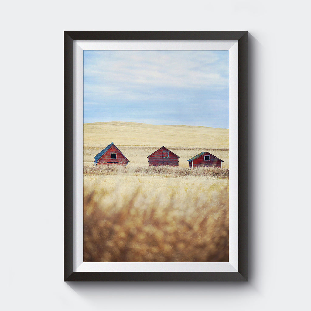 "12x18"" Test Print <br> 3 Red Barns <br>Fine Art Metallic Print"