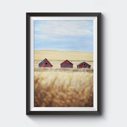 Canadian Prairies <br>Limited Edition Archival<br> Fine Art Chromogenic Print