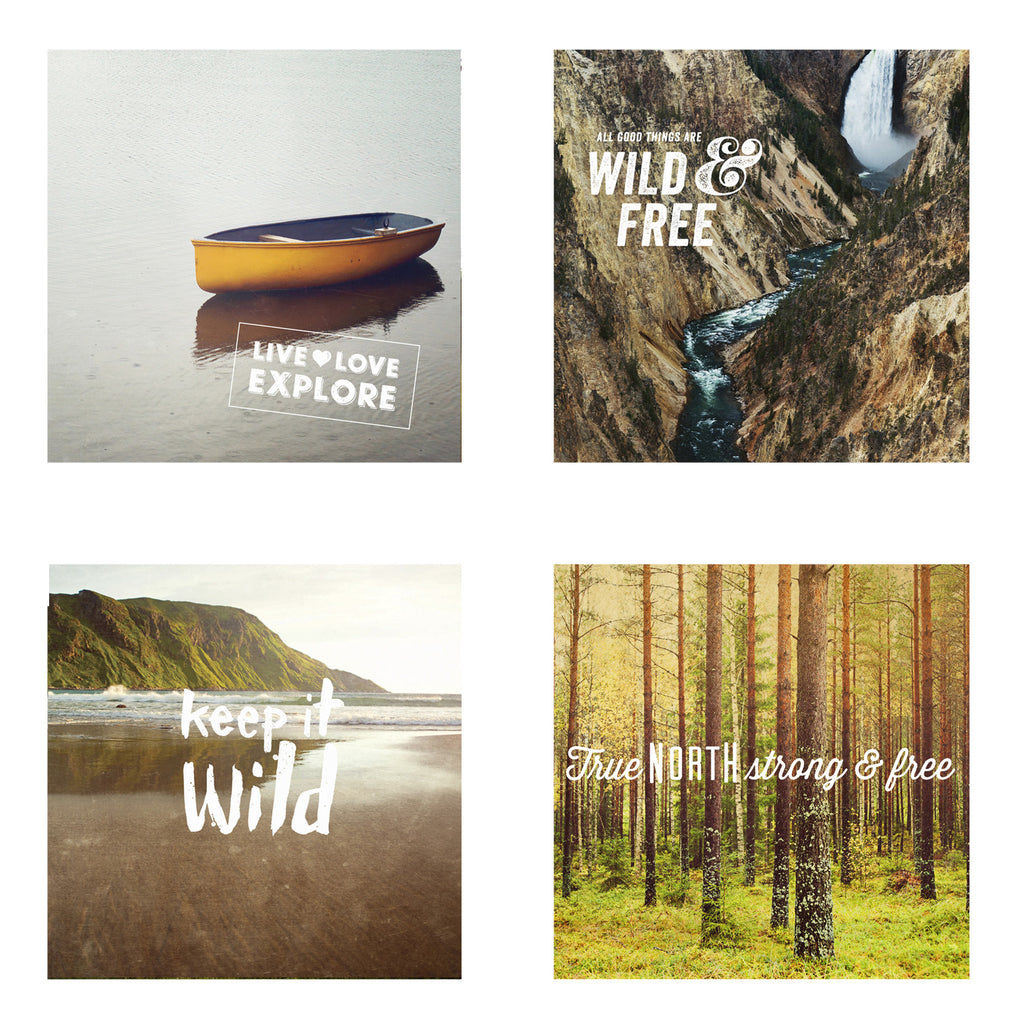 Metallic Mini Magnet Set of 4 <br> Postcard Inspired Nature Set