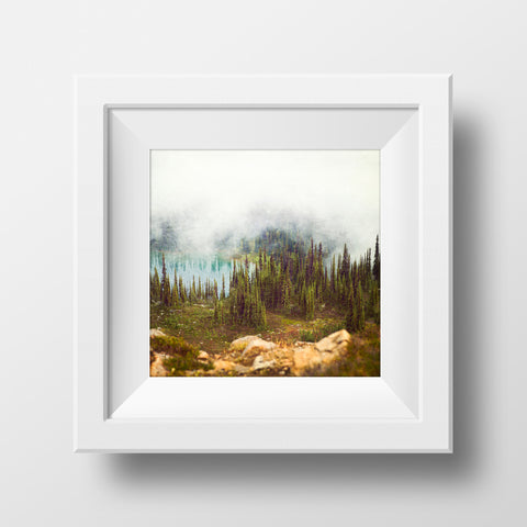 Sub Alpine Fir + Tarns <br> Mt Sale BC <br>Archival Fine Art Chromogenic Print