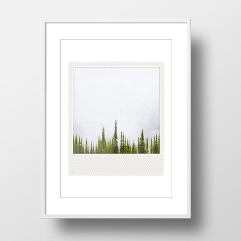 SALE<br> Metallic Polaroid Magnet <br>Fir Trees + Fog