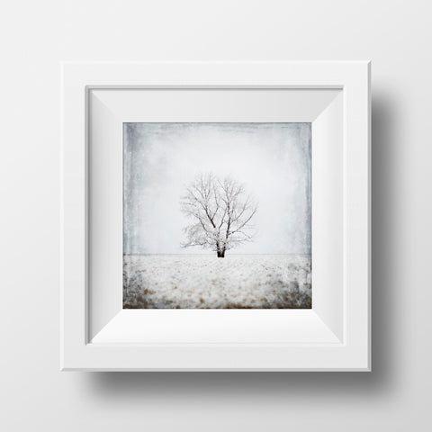 CLEARANCE Print <br> Lone Tree No. 1 <br> Various Finishes + Sizes
