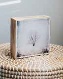 "Lone Tree in Winter <br> 5x5"" Signature Glossy Art Block  <br> Rustic Barn Wood Edges"