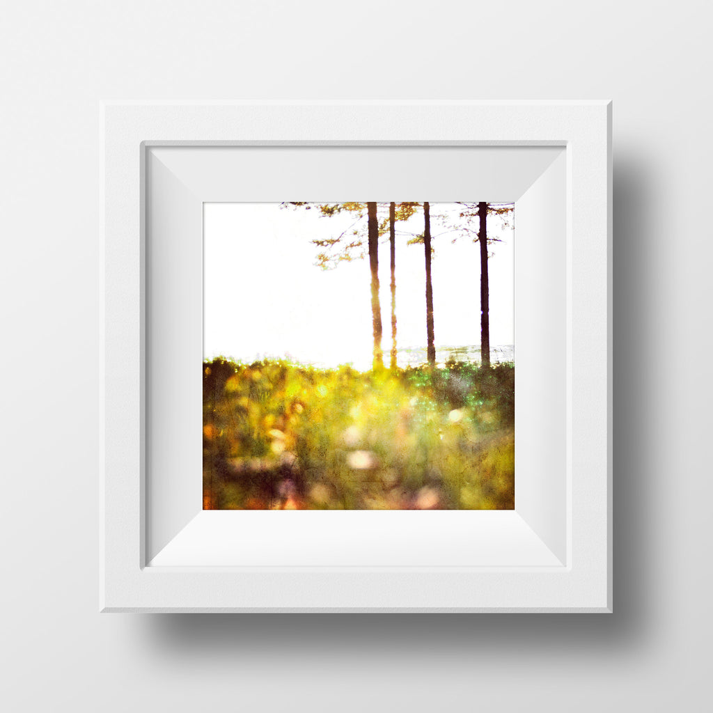 "Sample 8x8"" Print <br>Sunrise on Lake Superior<br> Matte Finish"