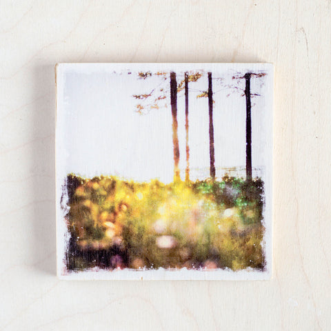 "SALE <br> Birch Wood Photo Coaster <br> 4x4"" Matte Finish"