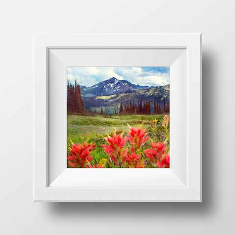 "AS IS 12x12"" Print <br>Wildflowers in B.C<br> Metallic Finish"