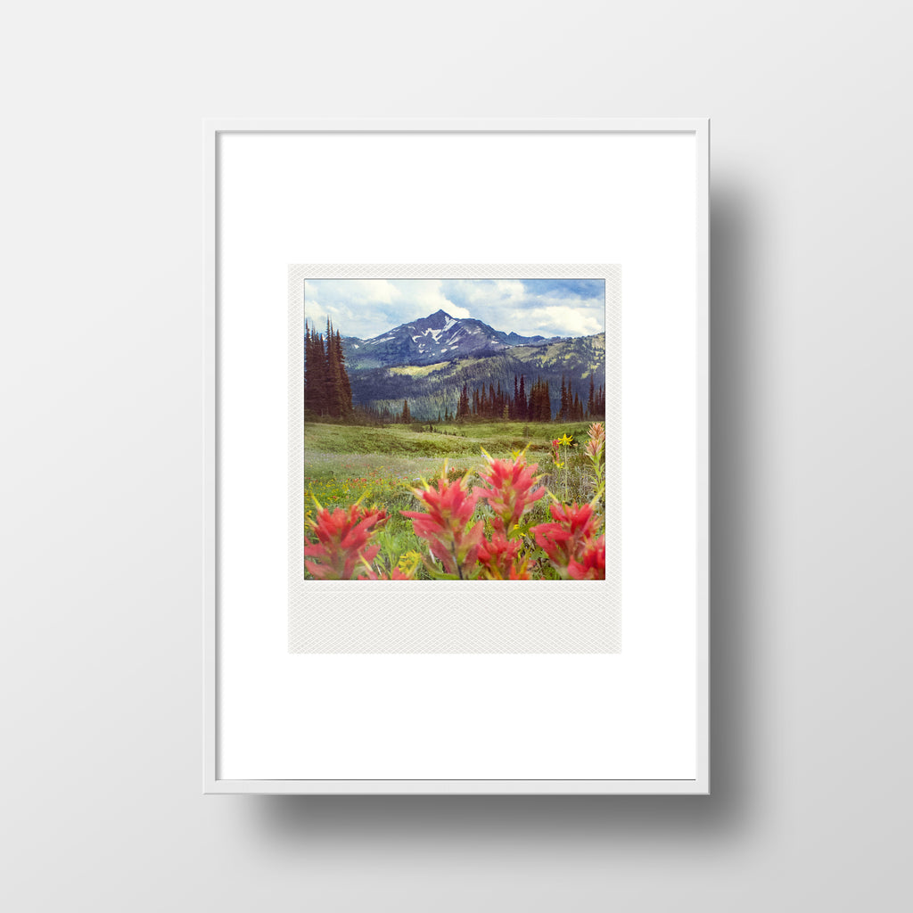 Metallic Polaroid Magnet <br> Wildflowers in July