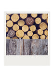 CLEARANCE Polaroid Magnet <br>Collected Woodpile + Hearts <br> Metallic Finish