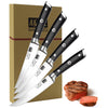 4pcs 5 inch 1.4116 German Stainless Steel Steak Knife set - SHAN ZU
