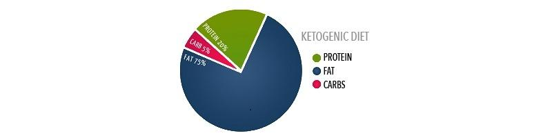 The Ketogenic Diet Explained