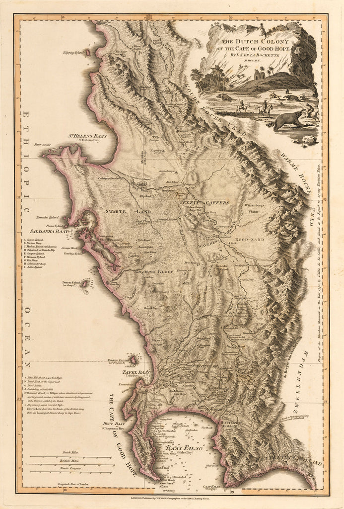 Antique Map : The Dutch Colony of the Cape of Good Hope  By: William Faden 1795