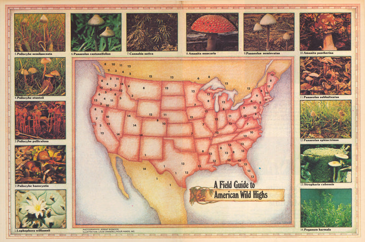A Field Guide to American Wild Highs - High Times Map, 1978