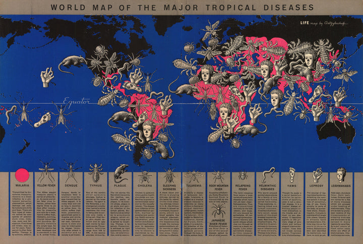 World Map of the Major Tropical Diseases By: Boris Artsybasheff for Life Magazine, 1944