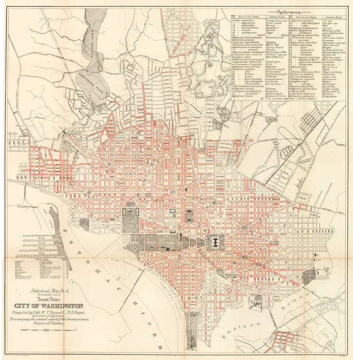 Statistical Map No. 4 Showing Lines of Shade Trees. City of Washington