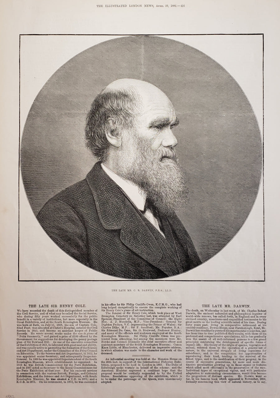 Antique print of Charles Darwin 1882