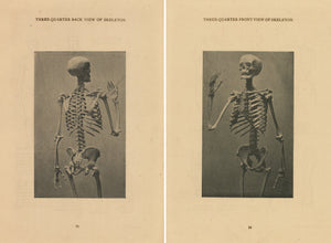 Pair of Skeleton Prints published in the early 1920s