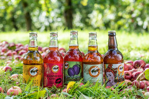 Sweet and Fruity Mixed Cider Selection