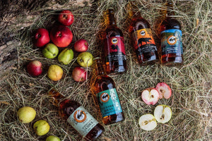 Cider Medley Collection  - a mix of Traditional Apple and Fruit ciders