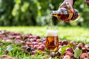 Cider Farm Tour and Cider Tastings