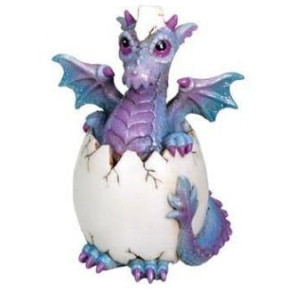 Bindy Dragon Hatchling - East Meets West USA