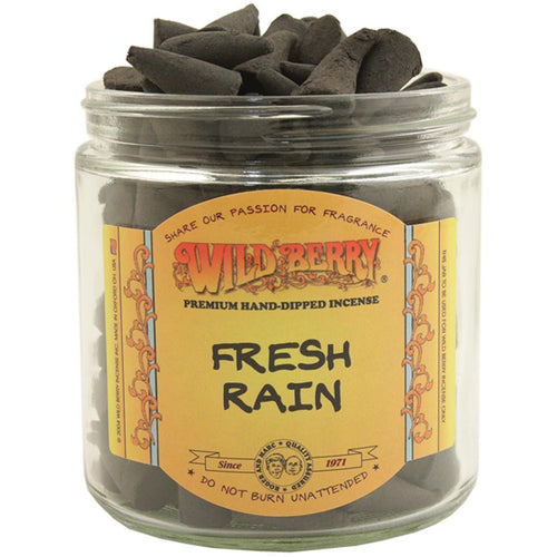 Fresh Rain Incense Cones - East Meets West USA
