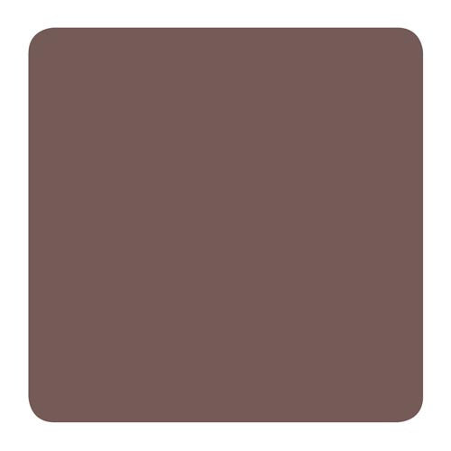 Homeworks Etc brown paint color swatch