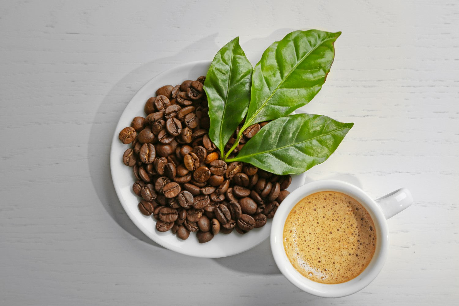 coffee beans with leaf and cup of coffee
