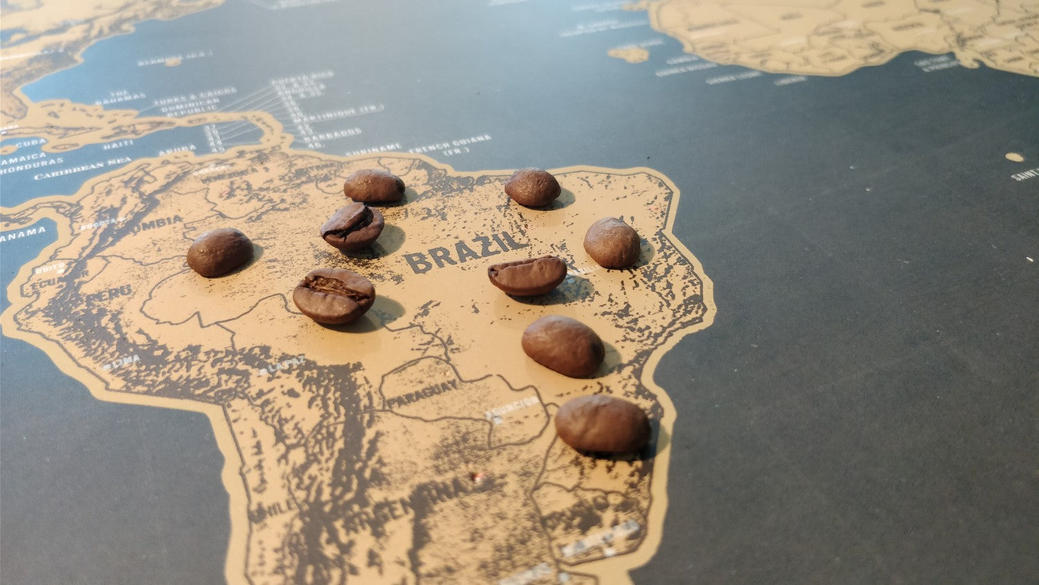 coffee beans on world map