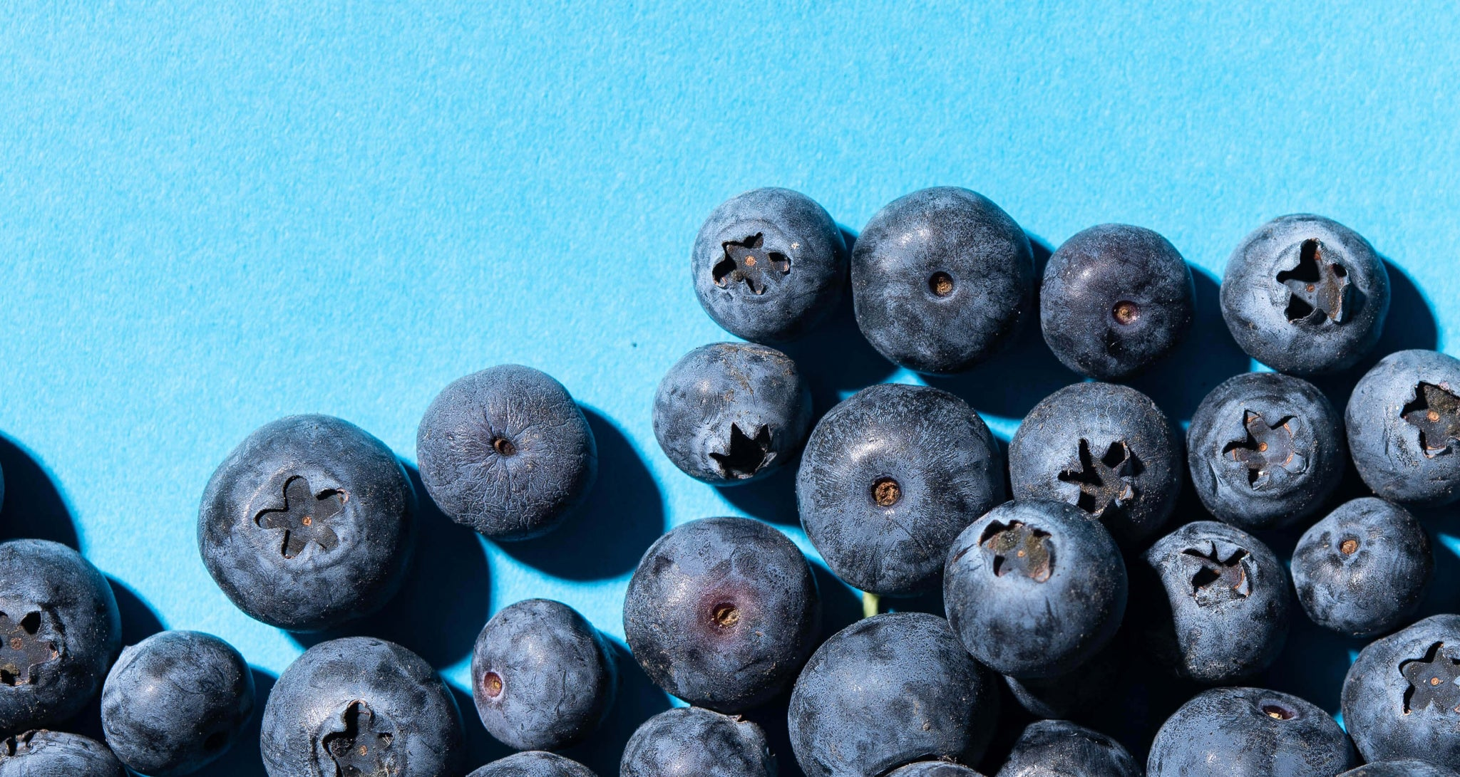 Blueberries Are In...Again