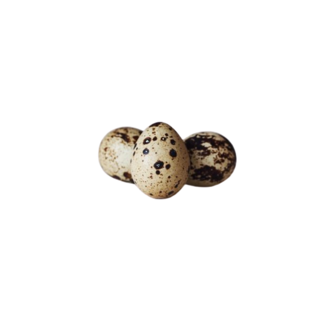 Quail Eggs - Pack of 18
