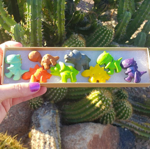 Dinosaur Crayon Box Set
