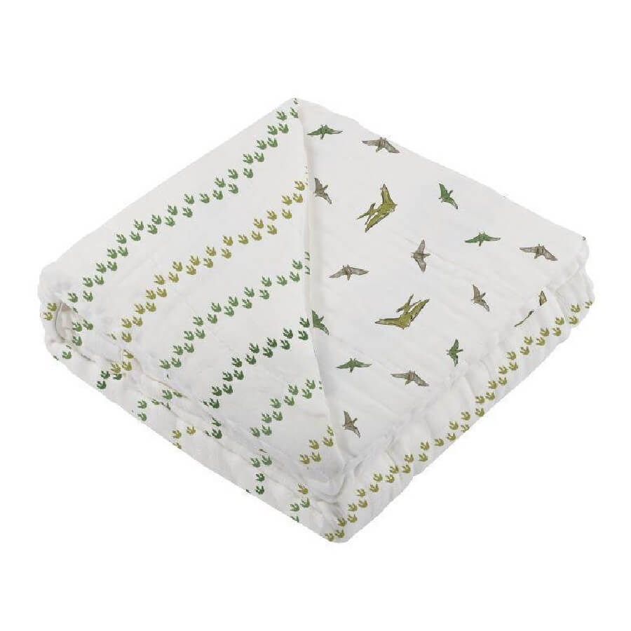 Muslin Baby Blanket - Dino Feet and Pteranodon - Roll Up Baby