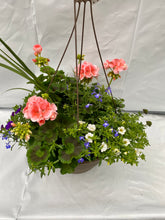 "Load image into Gallery viewer, 13"" Hanging Basket"