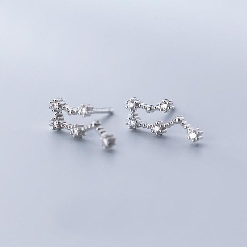 Your Zodiac Constellation Minimal  Studs