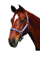 Roma Supreme Head Collar