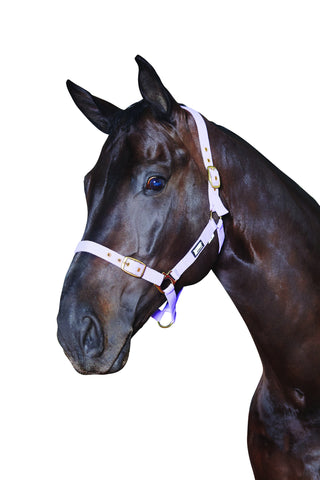 roma adjustable head collar for horses
