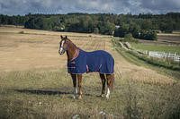 Horze Quality Base Fleece Rug uk