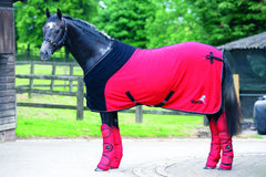 Masta Windsor Show Rug RED