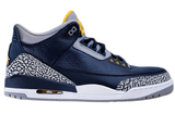 Air Jordan 3 PE Michigan