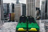 Oregon Nike Free Trainer 5.0