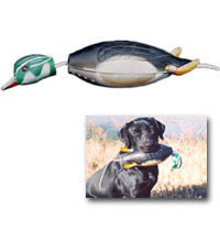 Dokken Dead Fowl Trainer  -  Wood Duck