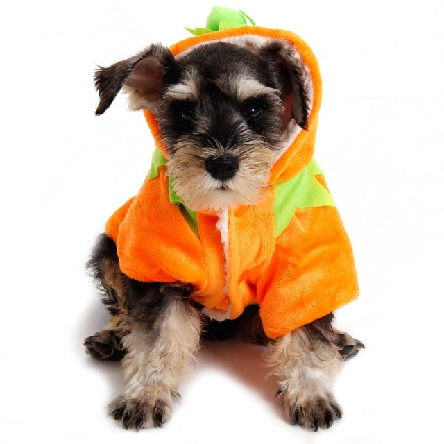 Free Shipping! Pet Dog Clothes Halloween Clothing