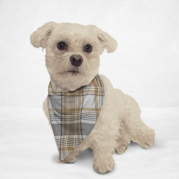 Golden Checkered Cat & Dog Bandana