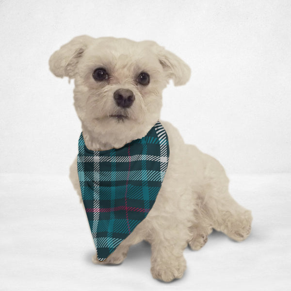 Teal Plaid Cat & Dog Bandana